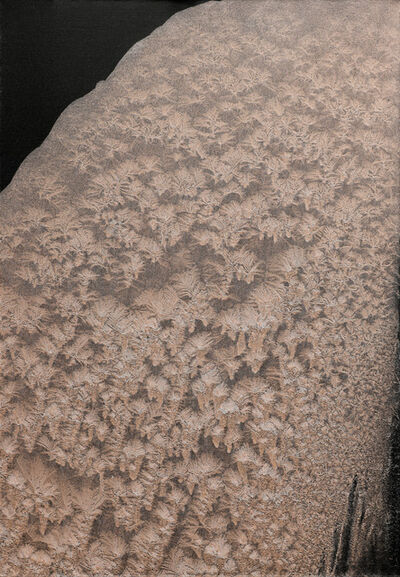 Ty Waltinger, 'Iced Metals III', 2013-2014