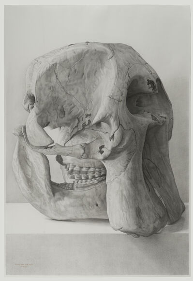 Claudio Bravo, 'Elephant Skull', 2006