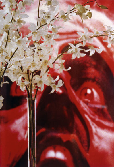 Louise Lawler, 'Red Face White Flowers', 2004