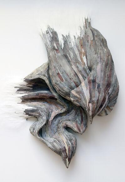 Henrique Oliveira, 'Untitled ', 2009