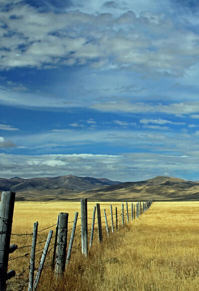 Larry Garmezy, 'Grazing Rights - Pastural landscape and sky, fenceline Montana Centennial Valley, in gold, brown and blue', 2016