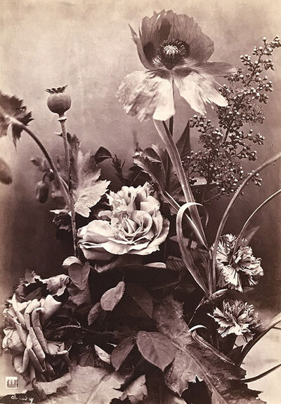 Charles Aubry, 'Roses, Poppies and Carnations (Roses, Pavots et Oeillets)', 1864c/1864c