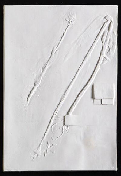 Beth Lipman, 'Wild Madder Specimen Sheet (Plantera Leucophaea)', 2019
