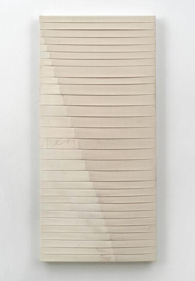 Luke Diiorio, 'ttylenol (the avgolemono)', 2015
