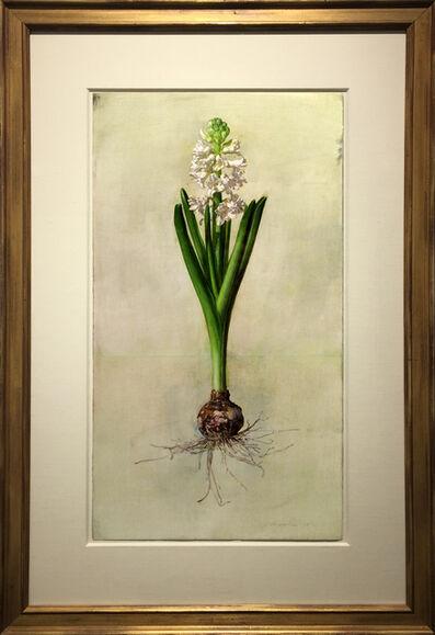 Jeffrey Ripple, 'White Hyacinth', 2016