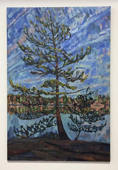 Edward Bear Miller, 'Young Pine', 2014