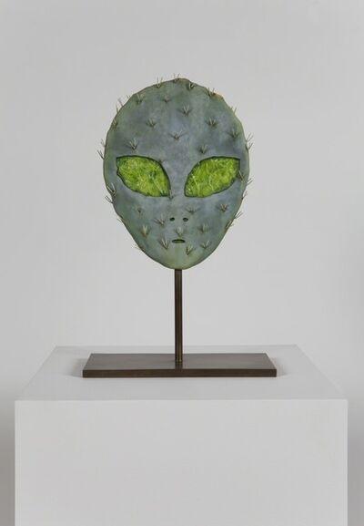 Matt Johnson, 'Alien Cactus', 2015