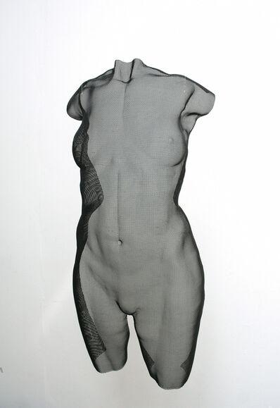 David Begbie, 'Torsis', 2010
