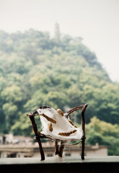 """Liang Shaoji, 'Untitled (chair, 5 worms), From """"Nature Series""""'"""