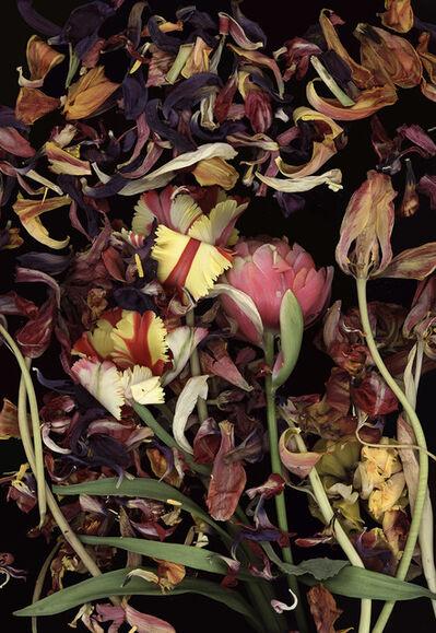 Luzia Simons, 'Stockage 124.1', 2011