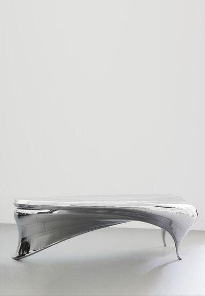 Verhoeven Twins, 'Lectori Salutem Desk Steel', 2011