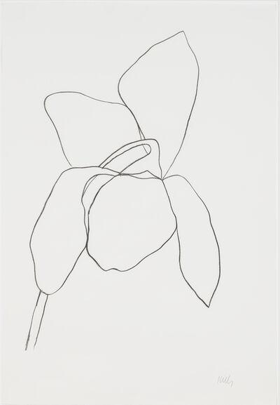 Ellsworth Kelly, 'Cyclamen I', 1964-1965