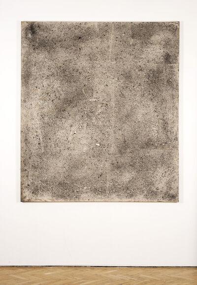 Duncan MacAskill, 'Ash Field', 2012/2013