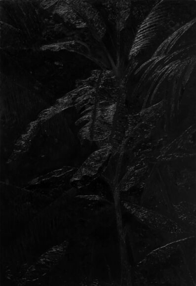 Paulina Silva Hauyon, ' Floresta da Tijuca II',  2014
