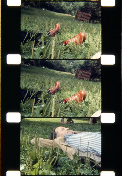 Jonas Mekas, 'The Film Maker, Central Park, NYC, 1974', 2013