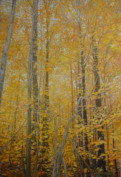 John Troxell, 'Autumn Trees'