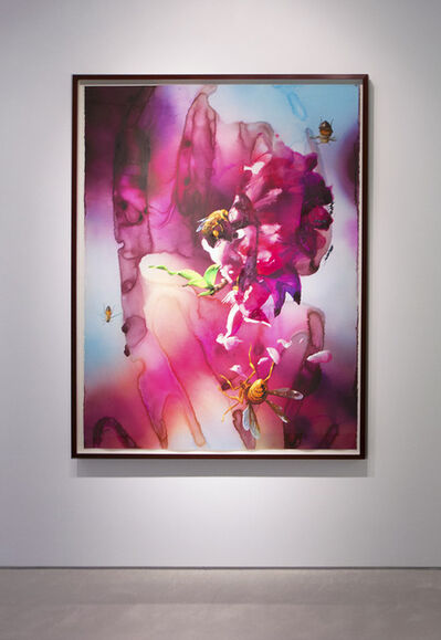 Alexis Rockman, 'Untitled (Cherry Blossoms)', 2013