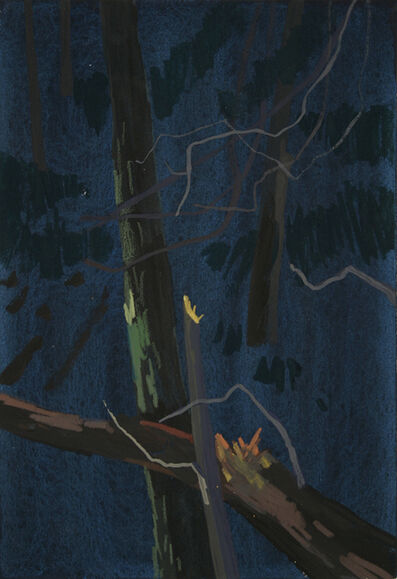 Scott Reeder, 'Trunk at Night', 2007