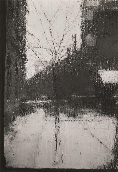 "Josef Sudek, 'From the series ""The Window of my Studio""', 1941-1954"