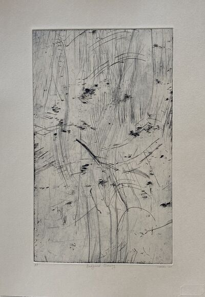 Chrisél Attewell, 'Background Drawing', 2020