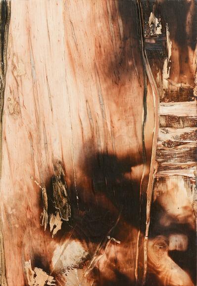 Yechel Gagnon, 'Livre de la terre', 2017