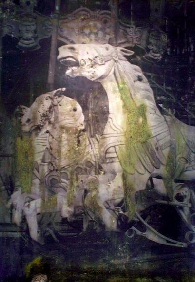Andrea Guastavino, 'Cavalli', 2011
