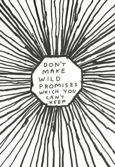 David Shrigley, 'Don't make wild promises which you can't keep', 2004