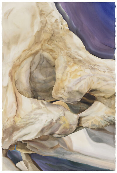 Guo Hongwei 郭鸿蔚, 'The Landscape of Natural Form No.1 自然形式的风景No.1', 2017