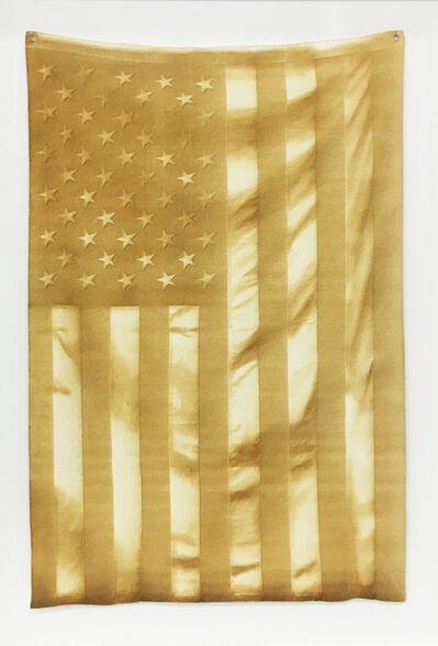 Joe Nanashe, 'Untitled (Burned Flag)', 2016