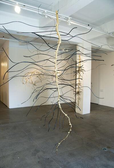 Dalya Luttwak, 'Root of Soybean', 2014