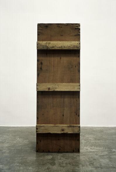 Feng Yan 封岩, 'Wood Case', 2010