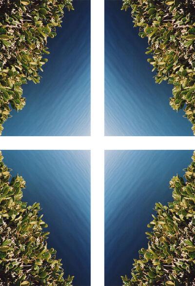 Ryan James MacFarland, 'Hedge Diamond #1', 2012