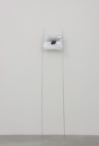 Adriano Amaral, 'Untitled', 2016
