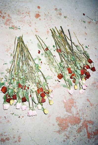 Lin Zhipeng, '一地干花/Dry Flower', 2017