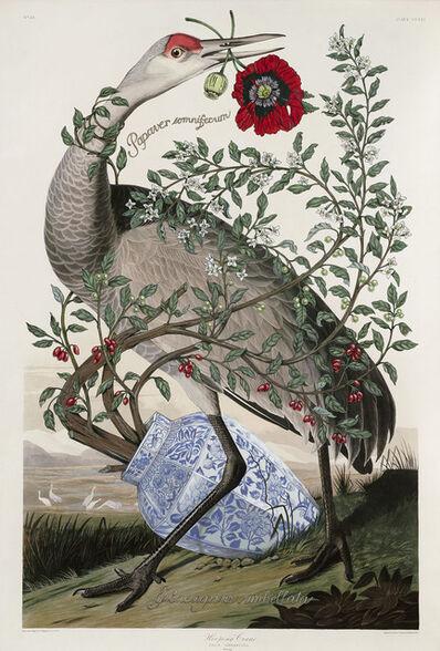 Penelope Gottlieb, 'Elaeagnus Umbellata', 2017