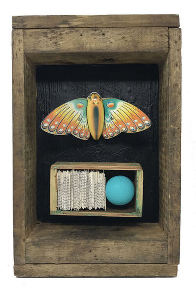 Robin Howard, 'Butterfly Box 1', 2019