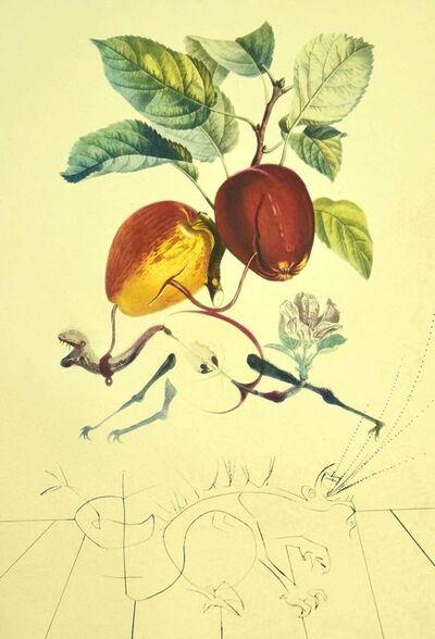 Salvador Dalí, 'Pomme Dragon (Eve's Apple)', 1969