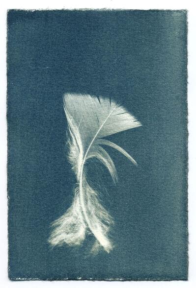 Ken Rosenthal, 'Feathers #13-2', 2013