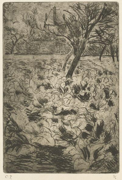 Camille Pissarro, 'The Cabbage Field (Le champ de choux)', ca. 1880