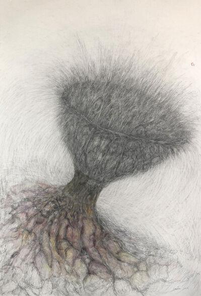 Deborah Caiola, 'Microbiome', 2019