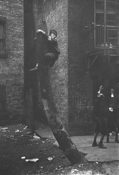 Helen Levitt, 'Untitled (Masks in Tree), New York City, New York (variant)', ca. 1939