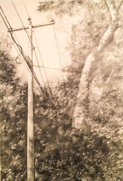Laura Broaddus Hexner, 'Telephone Line I', 2014