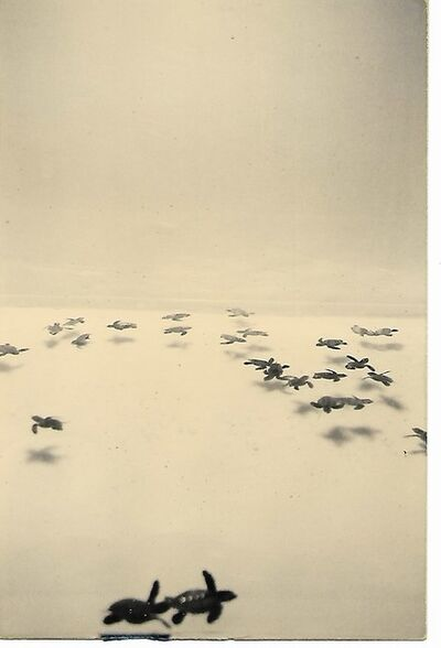 Yamamoto Masao, 'Nakazora #853', ca. 2000