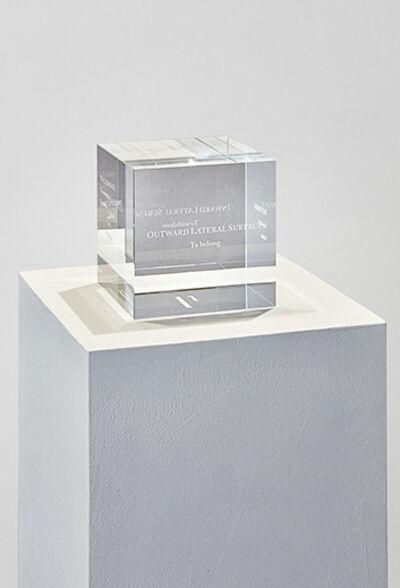 Liz Magic Laser, 'The Invisible Cube', 2013