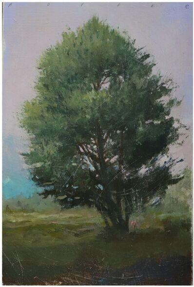 Peter Hoffer, 'Forrest (220204)', 2020