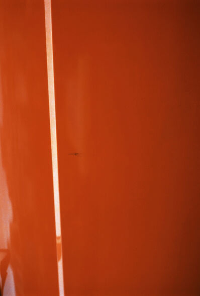 Jan Dibbets, 'Orange with white stripe', 2012