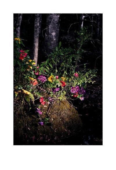 Leslie Gabaldon, 'Ikebana 8459, Transculturation Series', 2020