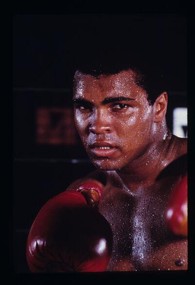 Ken Regan, 'Muhammad Ali'
