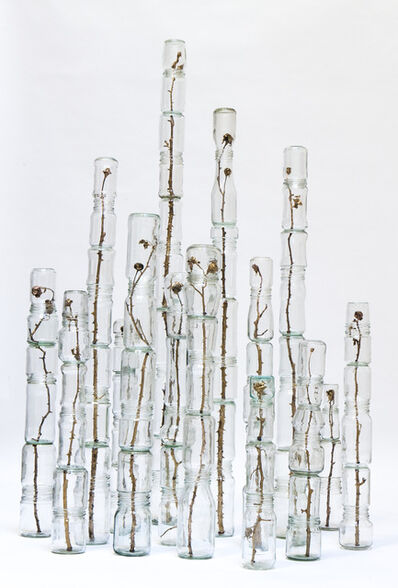 Xavi Muñoz, 'The Garden', 2015
