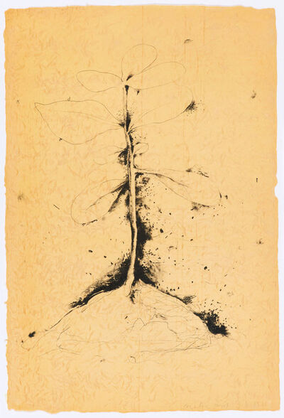 Jim Dine, 'The Plant Becomes a Fan #1 - #5', 1975